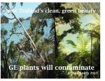 GE Plants contaminate